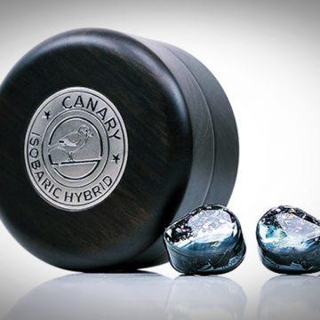 Elkészült az AAW CANARY hibrid füles végleges változata